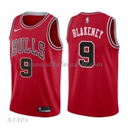 Camisetas Baloncesto Niños Chicago Bulls 2018 Antonio Blakeney 9# Icon Edition..