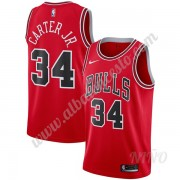 Camisetas NBA Niños Chicago Bulls 2019-20 Wendell Carter Jr. 34# Rojo Icon Edition Swingman..