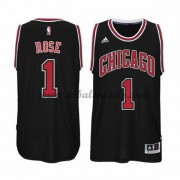 Camisetas NBA Baratas Chicago Bulls 2015-16 Derrick Rose 1# Alternate..