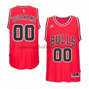 Camisetas Baloncesto NBA Chicago Bulls 2015-16 Road