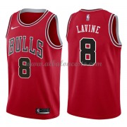 Camisetas Baloncesto NBA Chicago Bulls 2018  Zach Lavine 8# Icon Edition..