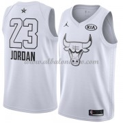 Chicago Bulls Michael Jordan 23# White 2018 All Star Game Swingman Basketball Jersey..