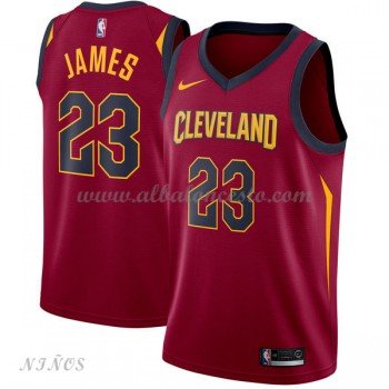 Camisetas Baloncesto Niños Cleveland Cavaliers 2018 LeBron James 23# Icon Edition