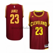 Camisetas NBA Baratas Cleveland Cavaliers 2015-16 LeBron James 23# Road..