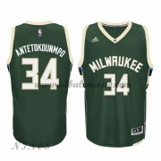 Camisetas Baloncesto Niños Milwaukee Bucks 2015-16 Giannis Antetokounmp 34# NBA Road..