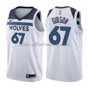 Camisetas Baloncesto NBA Minnesota Timberwolves 2018  Taj Gibson 67# Association Edition..