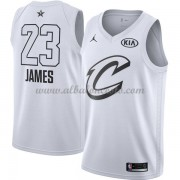 Cleveland Cavaliers LeBron James 23# White 2018 All Star Game Swingman Basketball Jersey..