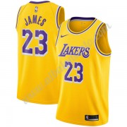 Camisetas Baloncesto NBA Los Angeles Lakers 2019-20 LeBron James 23# Oro Icon Edition Swingman..