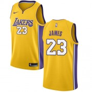 Camisetas Baloncesto NBA Los Angeles Lakers 2018 LeBron James 23# Icon Edition..